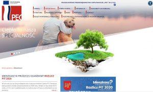 Ilustracja przedstawia zrzut ekranu ze strony internetowej PEC Pruszcz